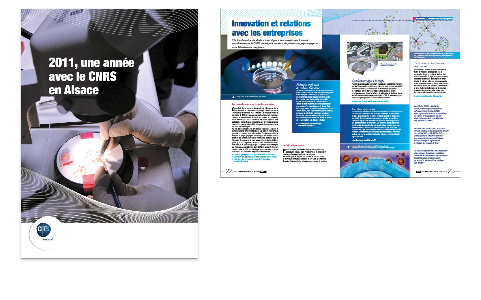 Déclinaison Alsace des chiffres du CNRS, 28 pages, 2012.