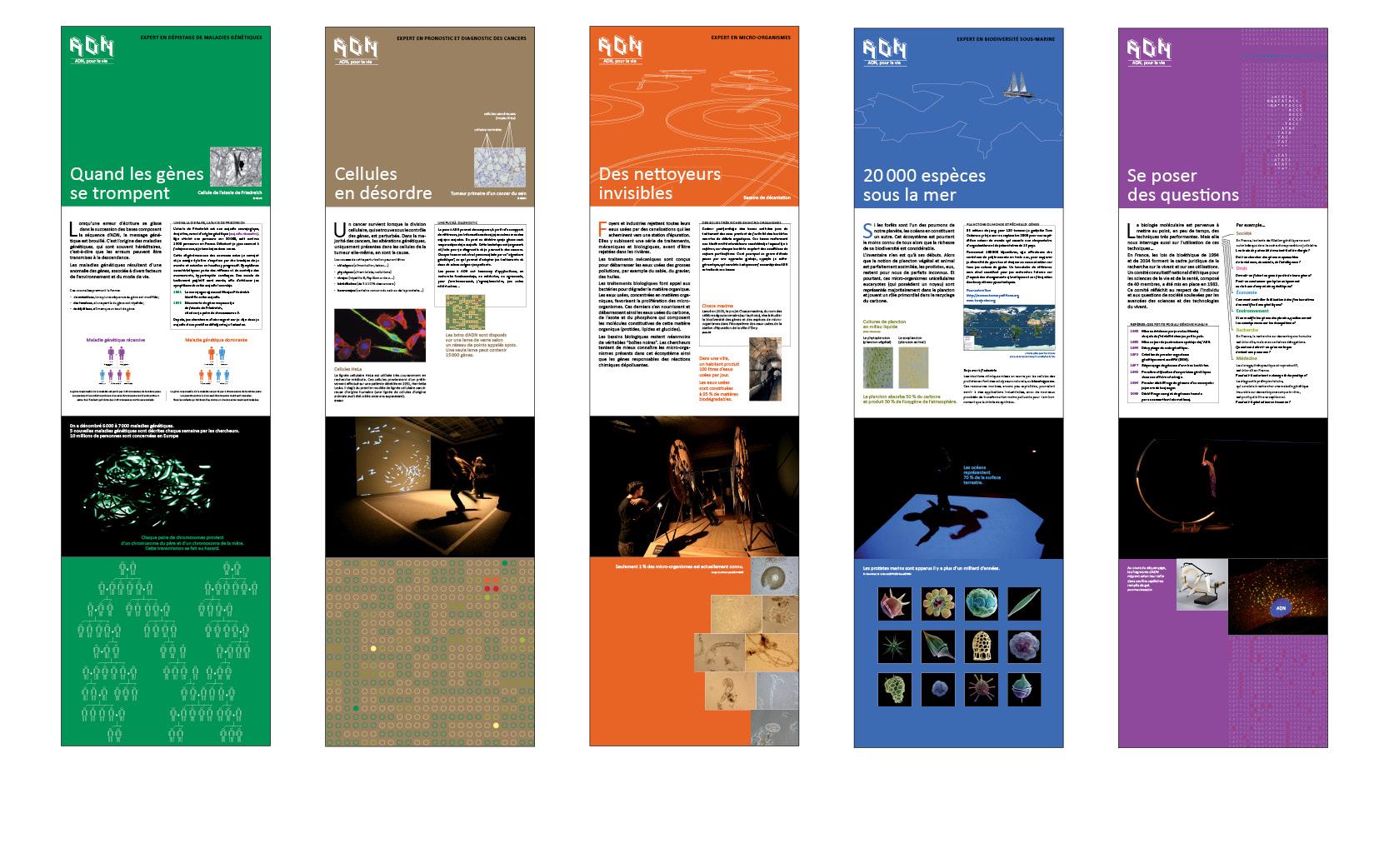 Exposition ADN, pour la vie série de 10 panneaux,  Ville de Schiltigheim (suite), 2010.