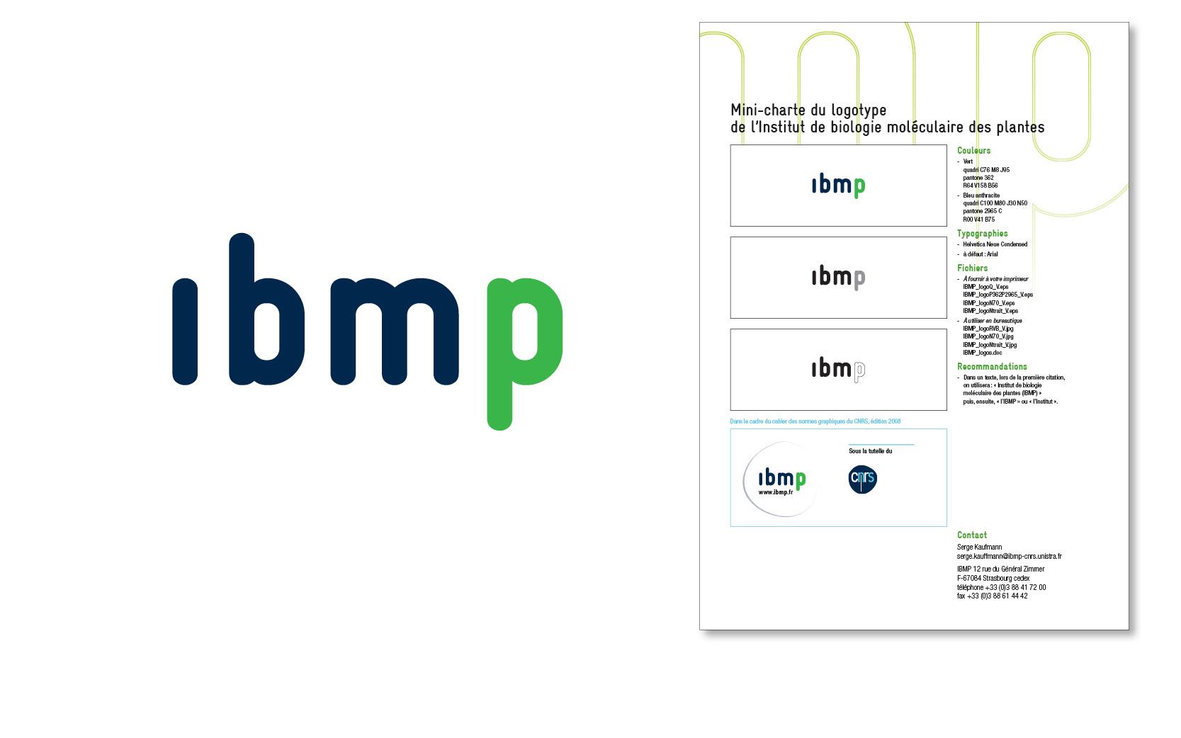 Logo et mini-charte graphique pour l'Institut de biologie moléculaire des plantes, 2009.